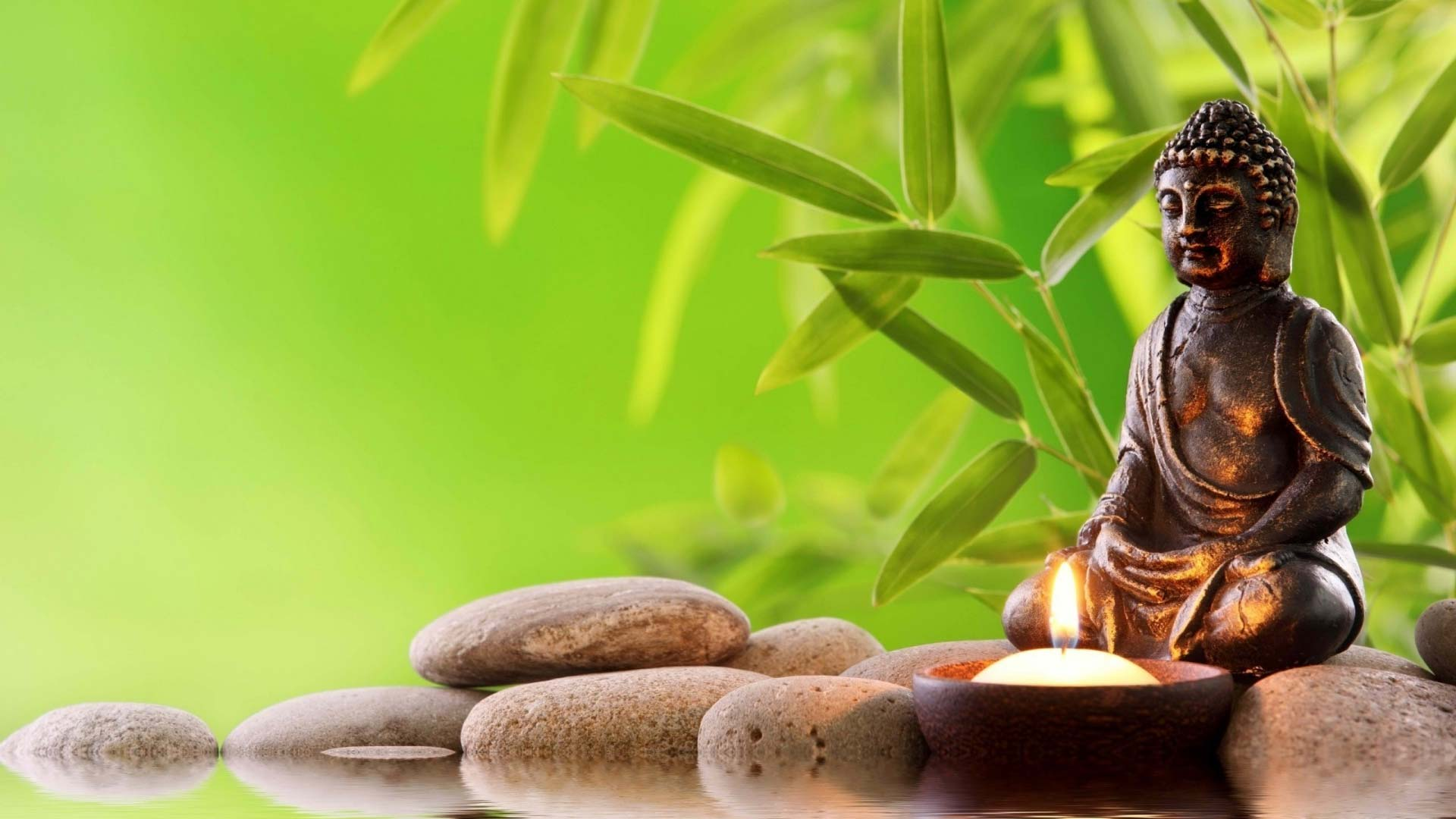 Feng Shui Tips For Good Energy In Your Home The Fridaymania