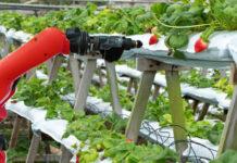 Robot farming