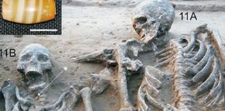 Harappan Couple Burial