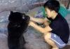 Incredible Friendship Between Tribal Boy and Bear Cub