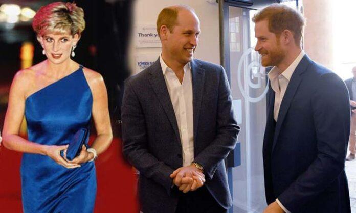 Princess Diana, Prince and brother William